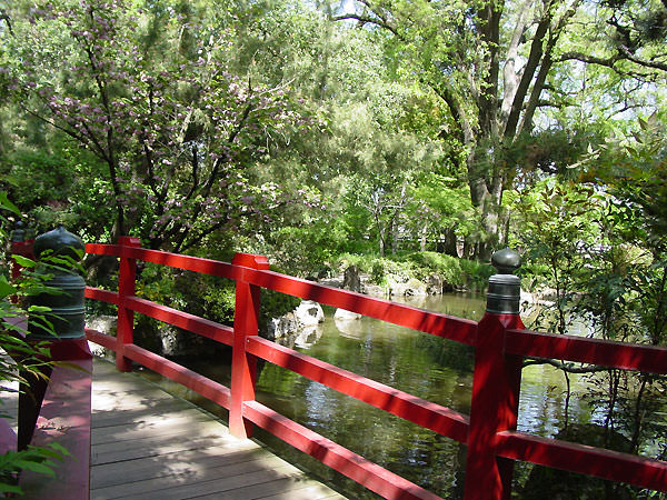The Japanese Garden Bridge